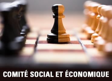 somite social et economique